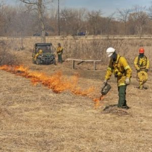 The Many Benefits of Controlled Burns