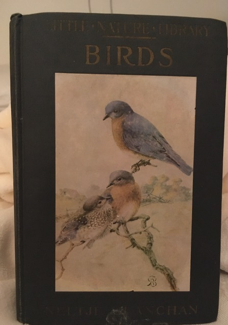 old book titled birds