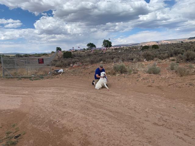Dooley in Navajo