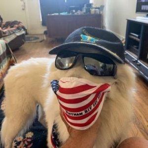 Tom Dooley, The Super Dog